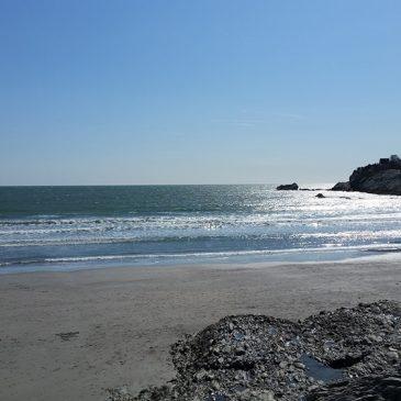 Oceanward